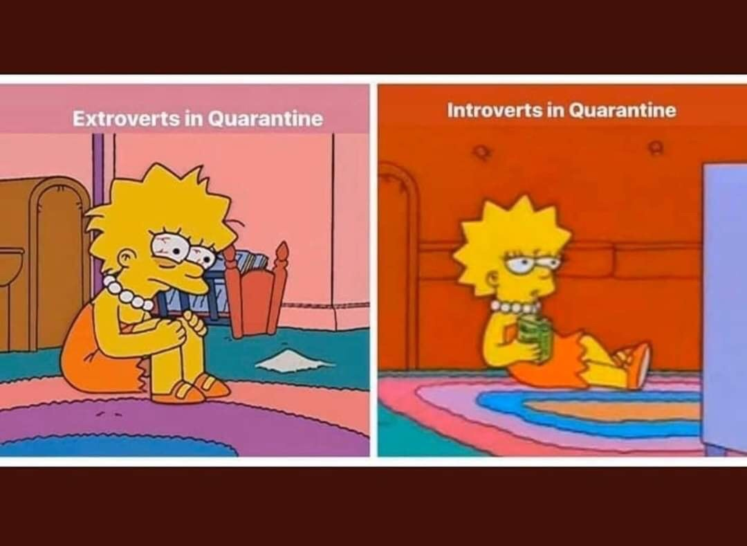 Image: The Simpson's Lisa on the left, red-eyed and holding her knees. Reads, Extroverts in Quarantine. On the right, The Simpson's Lisa relaxing on the couch. Reads, Introverts in Quarantine.